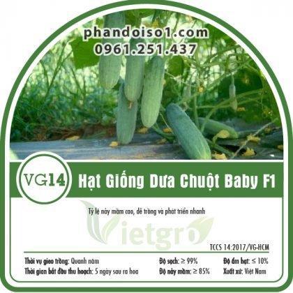 Hạt Giống Dưa Chuột Baby F1 - VG14
