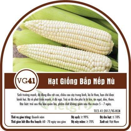 Hạt giống bắp nếp nù VG41