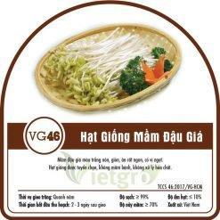 Hạt giống rau mầm đậu giá VG46
