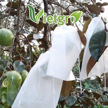 Túi bao trái vú sữa (túi vải non-woven) 18 x 20 cm