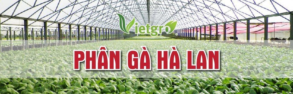 Phân bón hữu cơ sinh học Chicmanure Force Verte (Phân Gà Hà Lan)được nhập nguyên kiện từ Hà Lan. Phân bónchuyên dụng cho rau màu, cây ăn quả, cây công nghiệp. Giúp tăng năng suất và chất lượng sản phẩm.