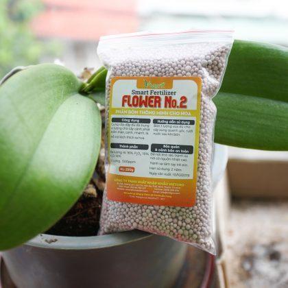 Phân bón thông minh Chuyên cho hoa - Smart Fertilizer Flower No. 2