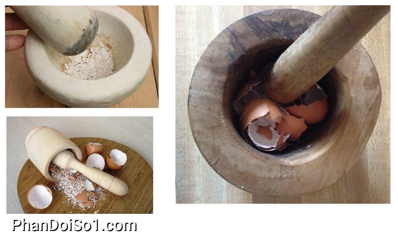 Bón phân bằng vỏ trứng đập vụn