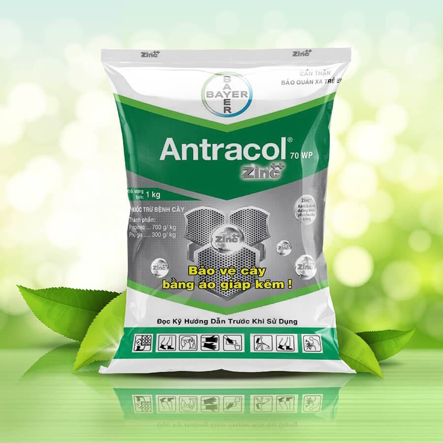 Antracol 70WP - Thuốc trừ bệnh (1kg)
