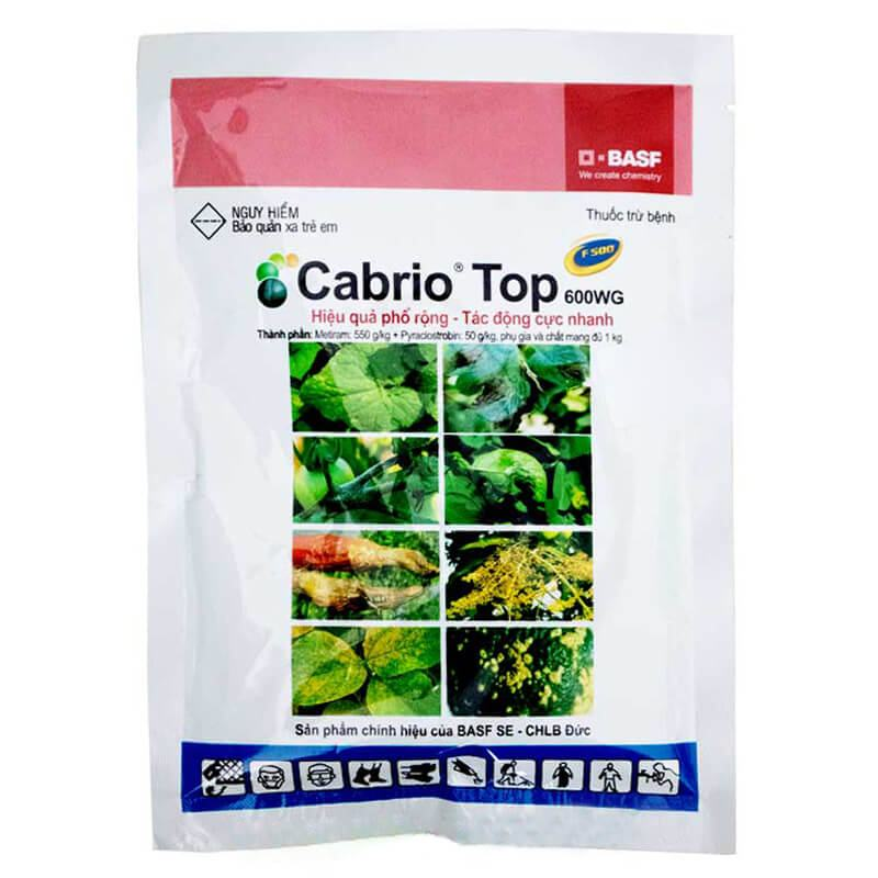 Cabrio Top 600WG - Thuốc trừ bệnh (100gr)