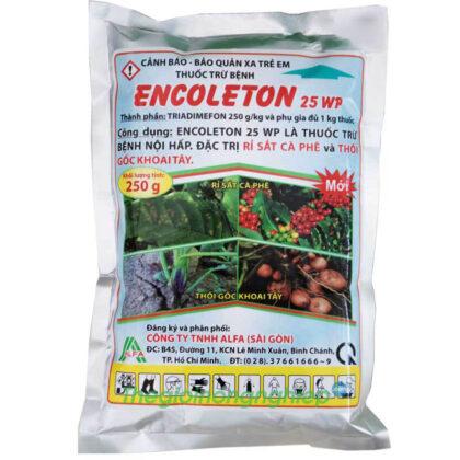 Encoleton 25WP (250g) - Thuốc trừ nấm