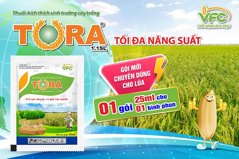 Tora 1.1SL - Thuốc điều hòa sinh trưởng
